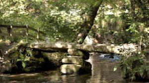 Historic Clapper Bridge, Cardinham Woods, Bodmin