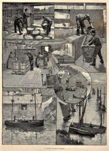 Illustrated London News 1880's