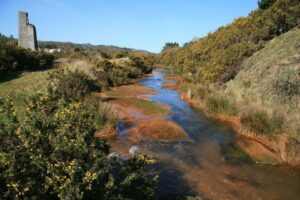 Carnon River near Point Mills - pollution from mine waters is clearly visible - John Gibson