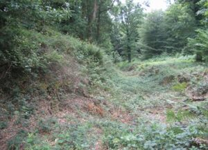 Dunmere hill  fort remains 2020
