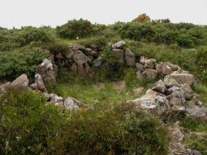 Kynance Gate Settlement - The Modern Antiquarian
