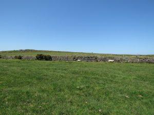 Stone Hedge on Bodmin Moor near Trippet Stone Circle